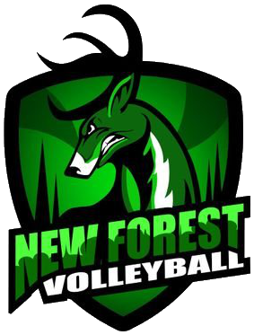 New Forest Volleyball